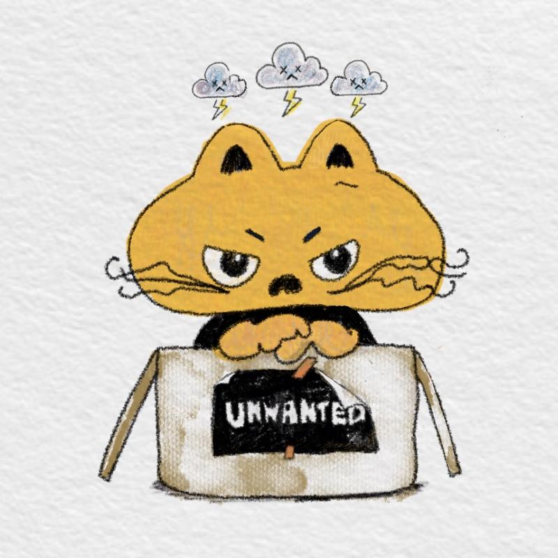 Grumpy Kitty Boy